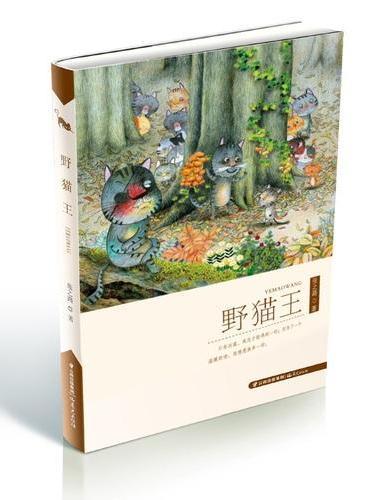 盛世中国—原创儿童文学大系-野猫王