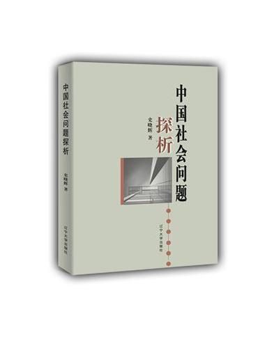 中国社会问题探析
