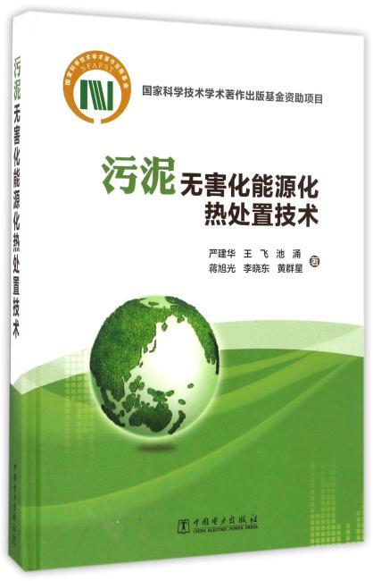 污泥无害化能源化热处置技术