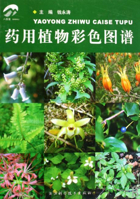 八百里/药用植物彩色图谱/主编钱永涛/浙江科学技术出版社