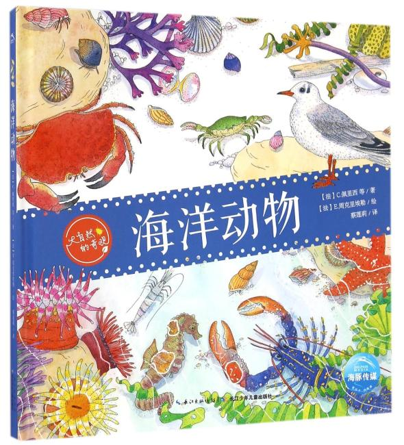 大自然的奇观:海洋动物