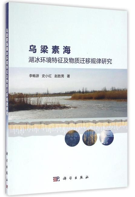 乌梁素海湖冰环境特征及物质迁移规律研究