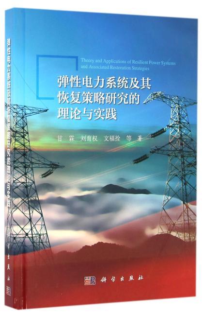弹性电力系统及其恢复策略研究的理论与实践