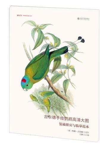 古尔德手绘鹦鹉高清大图:装裱册页与临摹范本