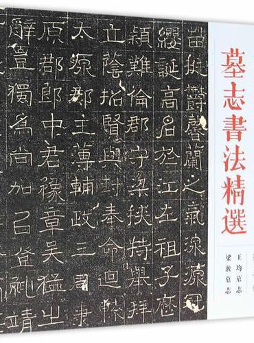 墓志书法精选:第五册