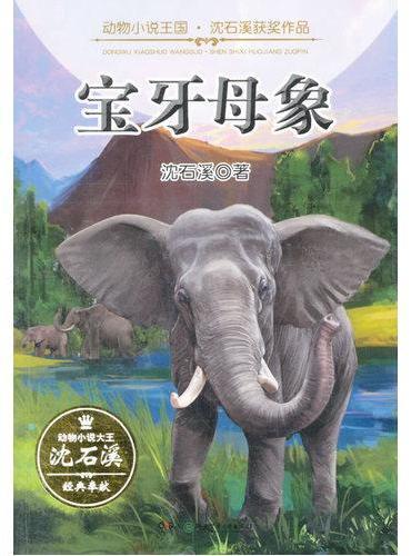 动物小说王国·沈石溪获奖作品·宝牙母象