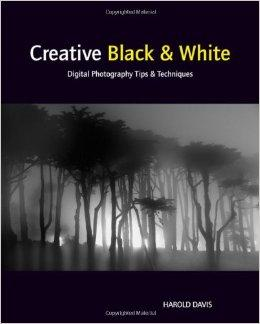 Creative Black And White: Digital Photography Tips And Techniques 9780470597750