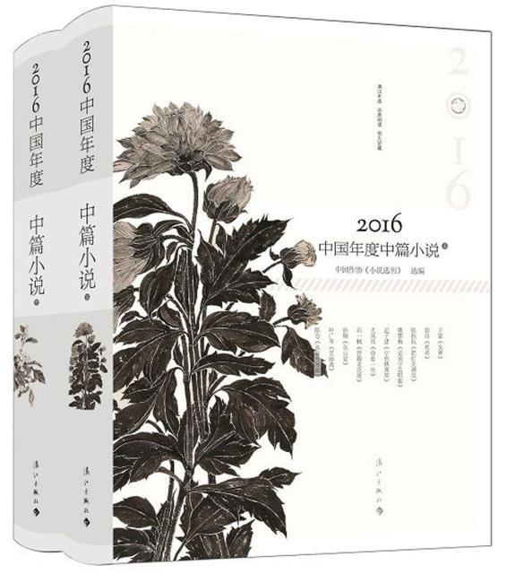 2016中国年度中篇小说(上下)