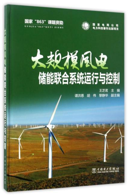 大规模风电储能联合系统运行与控制