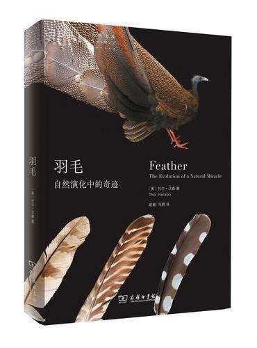 羽毛:自然演化中的奇迹(自然文库)
