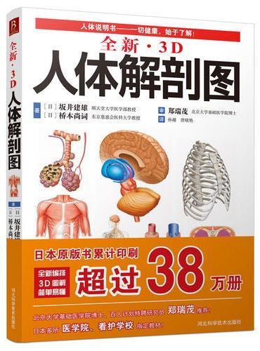 全新3D人体解剖图