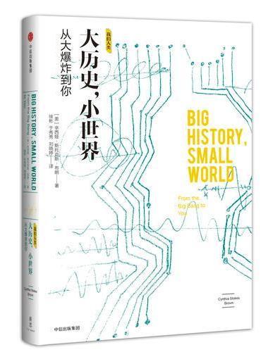 大历史,小世界:从大爆炸到你(我们人类系列)