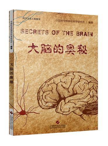 大脑的奥秘