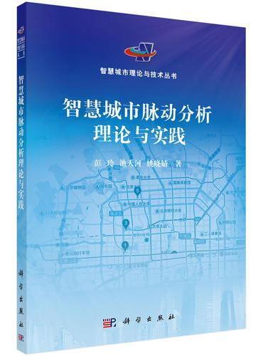 智慧城市脉动分析理论与实践