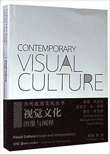 视觉文化(图像与阐释) / 当代视觉文化丛书