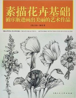 素描花卉基础