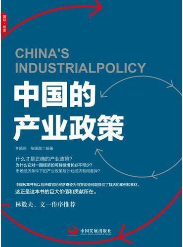 中国的产业政策