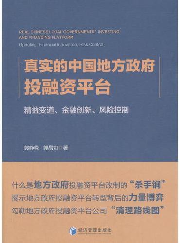 真实的中国地方政府投融资平台