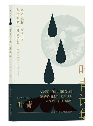 雨水直接打进眼睛:叶青诗集