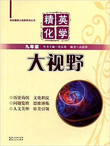 学科精英大视野系列丛书·精英化学大视野:9年级