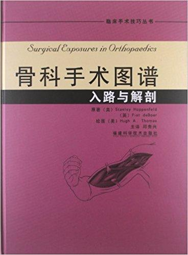 骨科手术图谱:入路与解剖