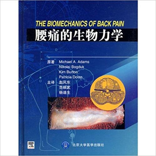 腰痛的生物力学(精装)