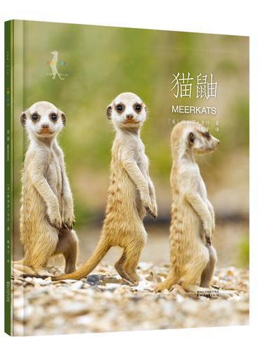 动物小百科:猫鼬(平装本)