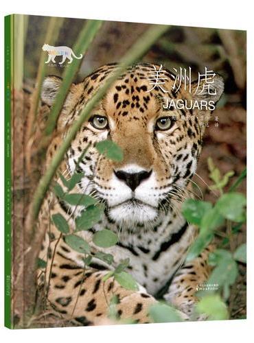 动物小百科:美洲虎(平装本)
