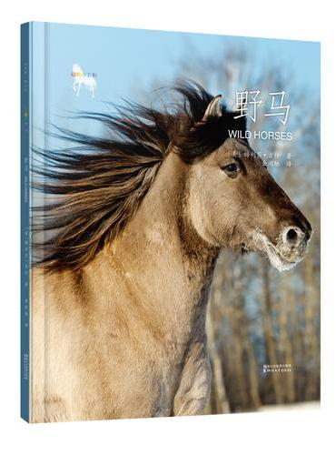 动物小百科:野马(平装本)