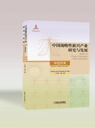 中国战略性新兴产业研究与发展 中压开关