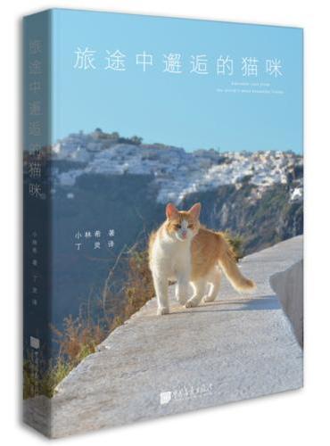 旅途中邂逅的猫咪