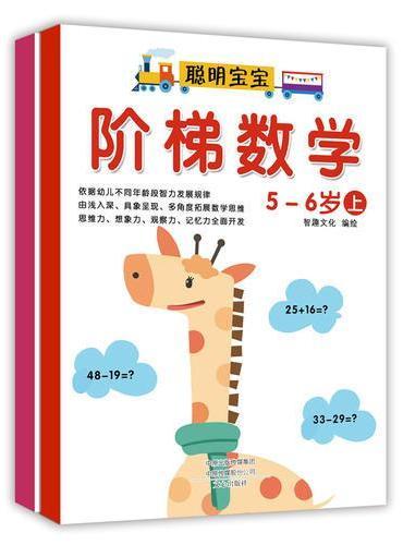 阶梯数学:5-6岁(套装上下册)