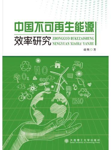 中国不可再生能源效率研究