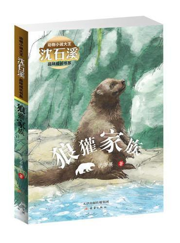 动物小说大王沈石溪品味成长书系·狼獾家族
