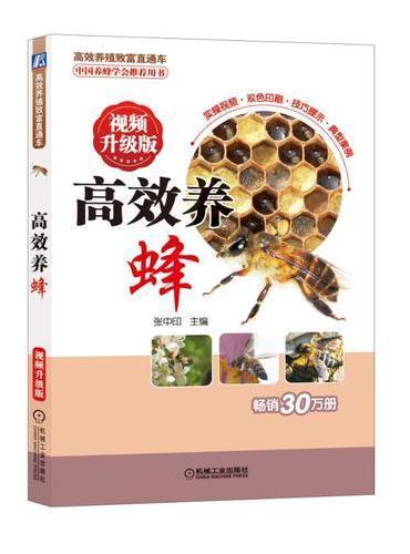 高效养蜂 视频升级版