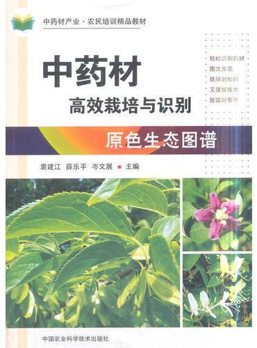 中药材高效栽培与识别原色生态图谱
