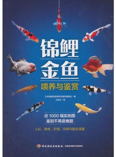锦鲤金鱼喂养与鉴赏