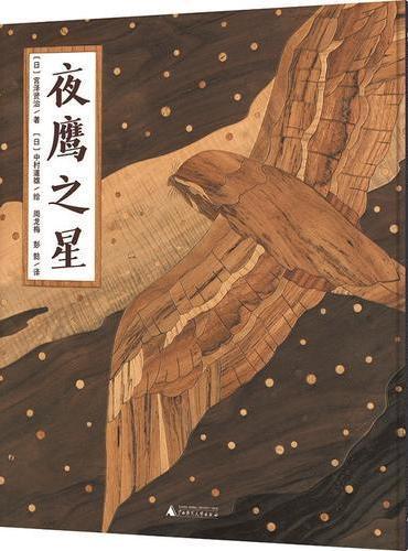 魔法象·图画书王国:夜鹰之星