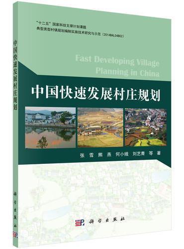 中国快速发展村规划