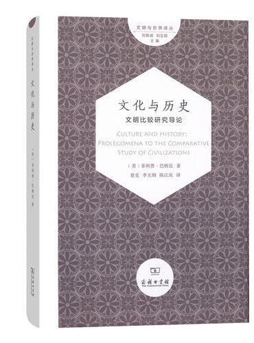 文化与历史:文明比较研究导论(文明与世界译丛)