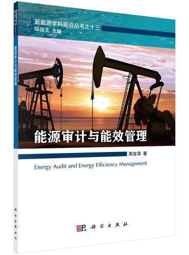 能源审计与能效管理