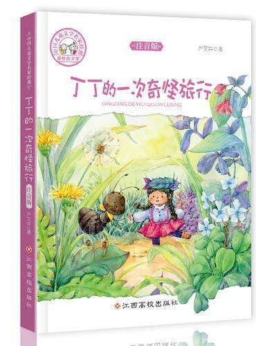 中国儿童文学名家经典-丁丁的一次奇怪旅行