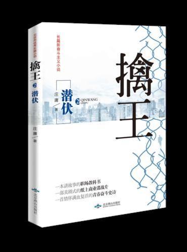 擒王二潜伏(从零开始的商战小说系列之二,从被罢免到绝地反击的精彩商战小说,潜伏阶段,如何低调养精蓄锐)