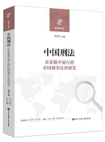 中国刑法(在祛魅中前行的中国刑事法律研究)