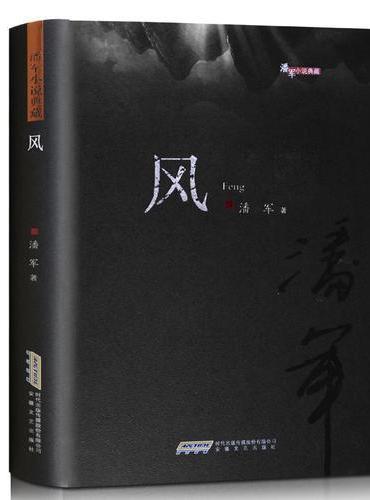 潘军小说典藏:风(平)