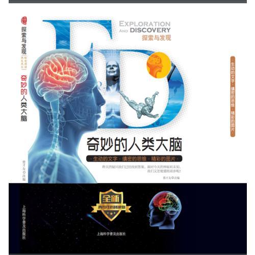 奇妙的人类大脑