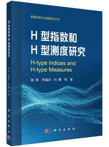 H型指数和H型测度研究