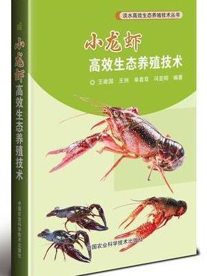 小龙虾高效生态养殖技术