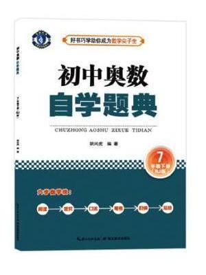 初中奥数 自学题典 7年级下册(RJ版)人教版