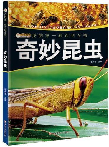 我的第一套百科全书(3170231Q00)奇妙昆虫